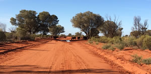 Nothern Territory Outback